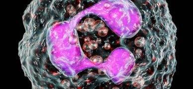 Nötrofil değerlerini etkileyen hastalıklar nelerdir?
